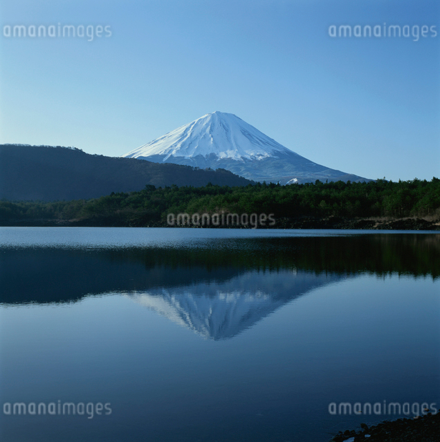 西湖の逆さ富士の写真素材 [FYI03347788]