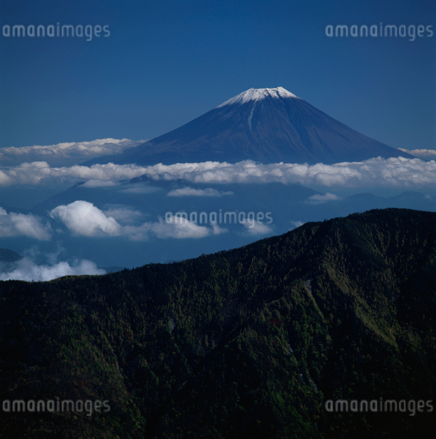 千枚岳から望む雲海と富士山の写真素材 [FYI03347789]