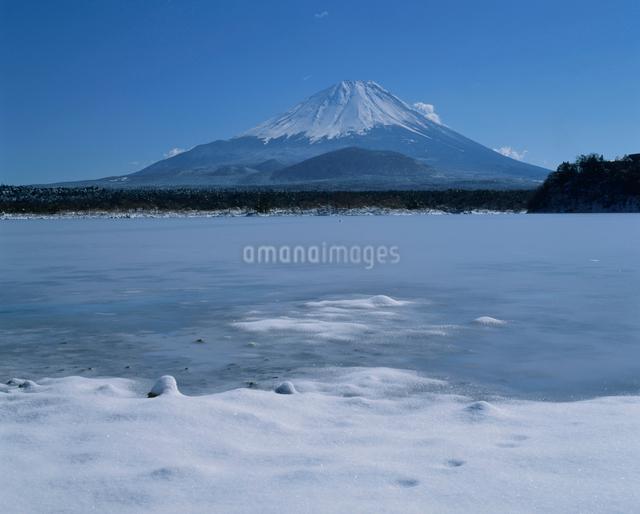 精進湖の氷結と富士山の写真素材 [FYI03347795]