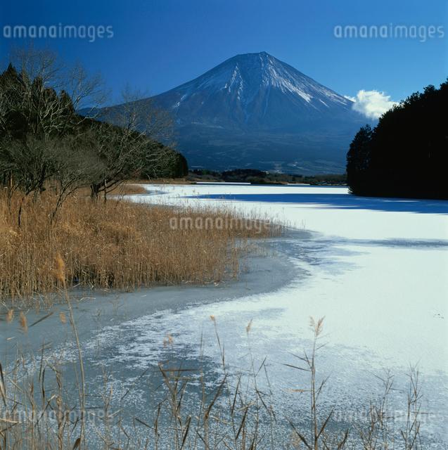 田貫湖の氷結と富士山の写真素材 [FYI03347805]