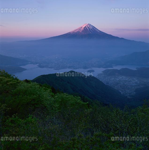 黒岳から望む朝焼けの富士山の写真素材 [FYI03347835]