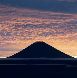 長者ヶ岳から望む朝焼けの富士山の写真素材 [FYI03347847]