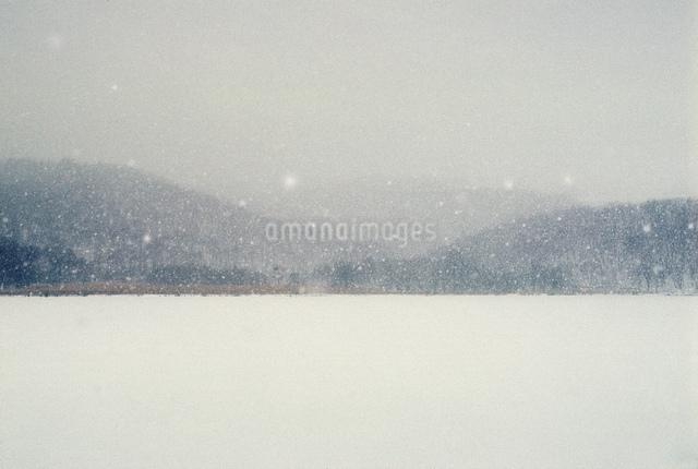 雪が降る嬬恋村の写真素材 [FYI03347938]