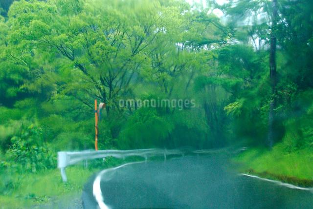 車内からみる雨の山道の写真素材 [FYI03347956]