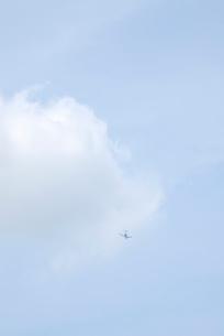 5月の空とジェット機の写真素材 [FYI03347978]