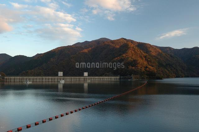 秋の奥多摩湖の写真素材 [FYI03348000]