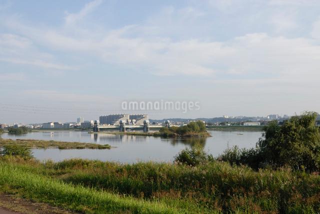 秋の多摩川 二ヶ領上河原堰堤の写真素材 [FYI03348001]