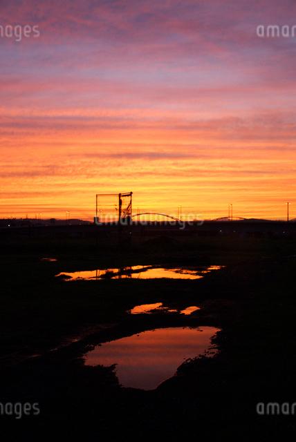 多摩川河川敷の水たまりに映える夕焼けの写真素材 [FYI03348037]