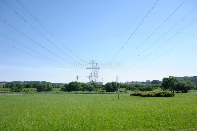多摩川の河原から見る鉄塔の写真素材 [FYI03348044]