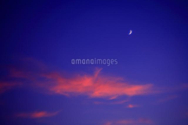 夏の夕方の空と雲と月の写真素材 [FYI03348073]