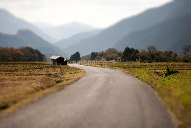 棚田に続く道と山並みの写真素材 [FYI03348108]