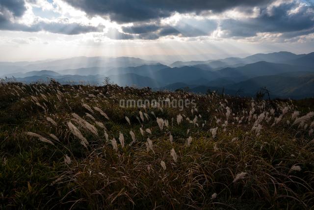 比婆山、池の段から望む中国山地の山並みと天使の梯子の写真素材 [FYI03348116]