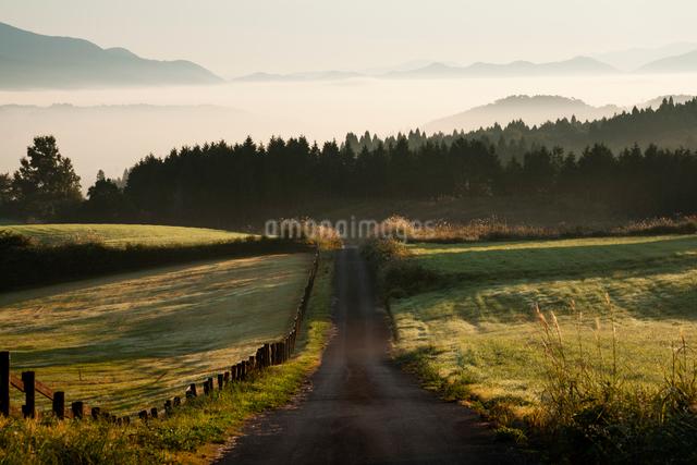 牧場の道と霧の海の写真素材 [FYI03348160]