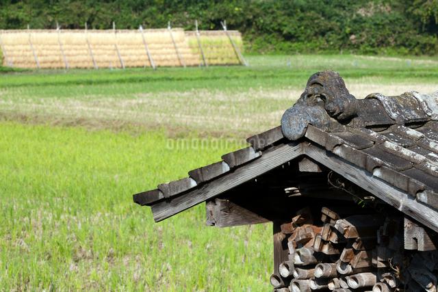 稲架小屋と稲架干しの写真素材 [FYI03348260]