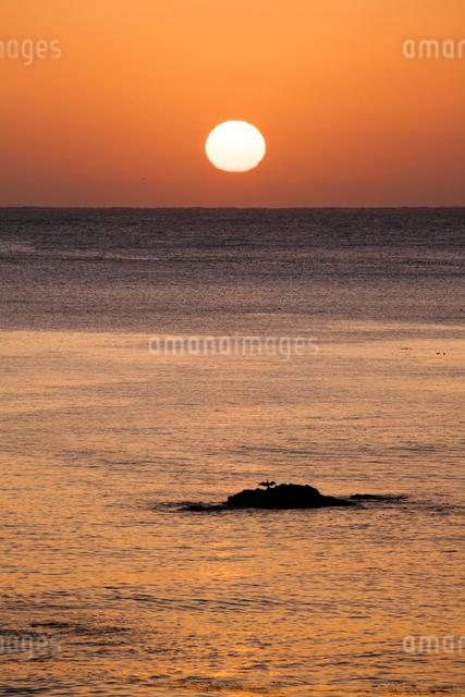 日本海の夕日と岩礁のウミウの写真素材 [FYI03348295]
