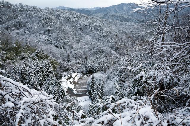 雪化粧する谷あいの棚田の写真素材 [FYI03348298]