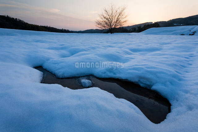 雪積もる冬の棚田の写真素材 [FYI03348310]