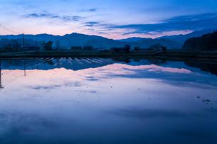 夜明けの山里映す田んぼの水鏡の写真素材 [FYI03348329]