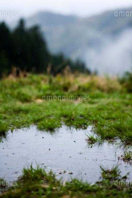 雨降りの水溜りの写真素材 [FYI03348331]