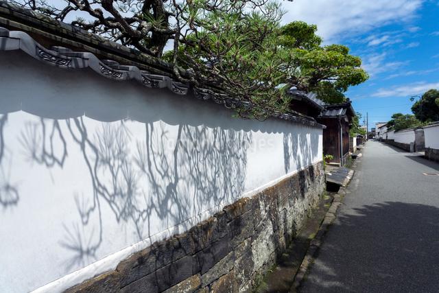 萩市 菊屋横丁の白壁に映る松影の写真素材 [FYI03348340]