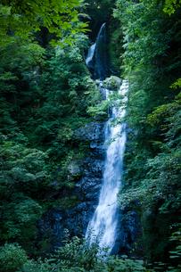 瀬戸の滝の写真素材 [FYI03348352]
