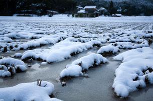 雪積もる冬の田面の写真素材 [FYI03348370]