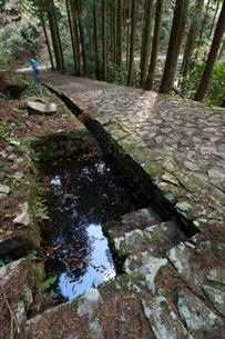 萩往還 キンチヂミの清水の写真素材 [FYI03348392]