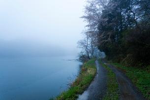 雨霧に霞む沢池と砂利道の写真素材 [FYI03348478]