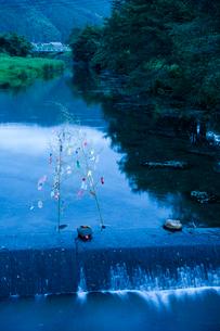川中の七夕飾りの写真素材 [FYI03348533]
