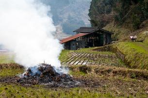 白煙立ち昇る草焼きと納屋の写真素材 [FYI03348596]