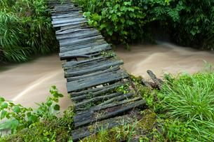増水した小川に架かる朽ちかけた木橋の写真素材 [FYI03348674]