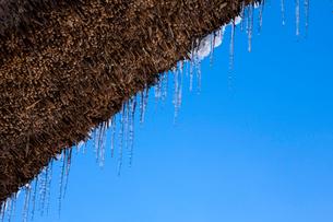 茅葺屋根から垂れる氷柱の写真素材 [FYI03348727]