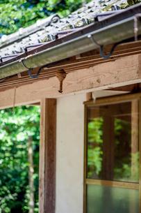 軒下で巣を作るスズメバチの写真素材 [FYI03348828]