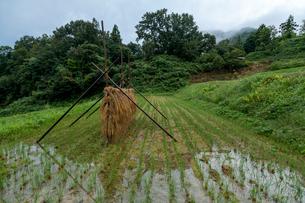 雨水貯まる棚田と稲架干しの写真素材 [FYI03348880]