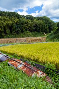 山間の田んぼと稲架の写真素材 [FYI03349016]