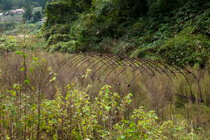 荒れる耕地の写真素材 [FYI03349132]