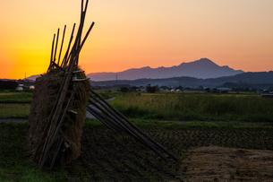 稲架と夜明けの伯耆大山の写真素材 [FYI03349227]