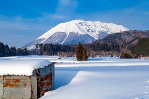 冬晴れの大山の写真素材 [FYI03349246]