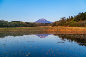 代掻き時の棚田と大山の写真素材 [FYI03349271]