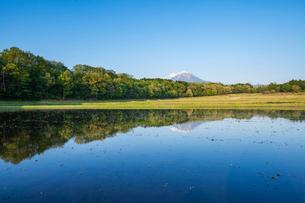 水張る棚田と大山の写真素材 [FYI03349274]
