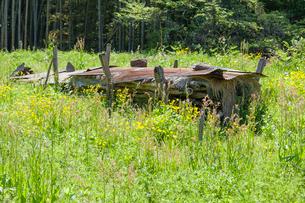 野草に囲まれる稲架置場の写真素材 [FYI03349288]