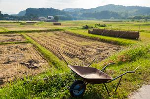 刈り取り終えた田圃と一輪車の写真素材 [FYI03349307]