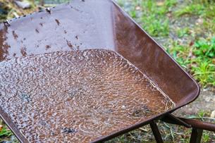 一輪車に貯まる雨水の写真素材 [FYI03349323]