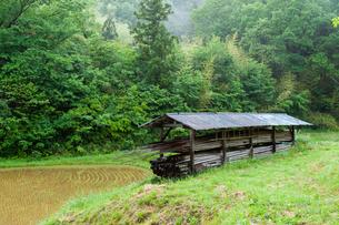 山間の田圃と稲架小屋の写真素材 [FYI03349378]