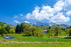 大山南壁を仰ぐ山里の写真素材 [FYI03349484]
