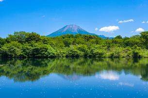 新緑の池と大山の写真素材 [FYI03349503]