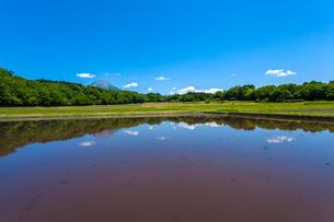 水張る棚田と大山の写真素材 [FYI03349518]