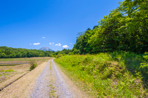 轍道と大山の写真素材 [FYI03349521]
