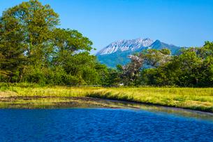 水張る田圃と大山の写真素材 [FYI03349530]