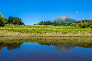 水張る棚田と大山の写真素材 [FYI03349534]